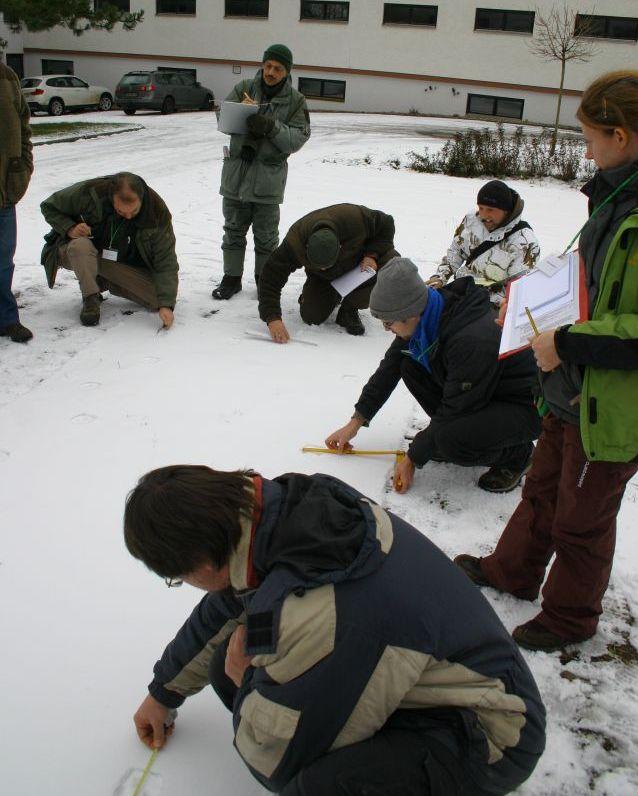 Školení bavorského Lynx Project Bavaria. Foto: Kateřina Poledníková