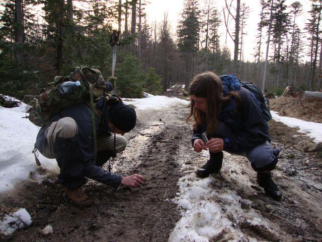 Sněhové podmínky letošnímu stopování příliš nepřálo, stopy lze najít i v blátě. Foto: Alena Skálová